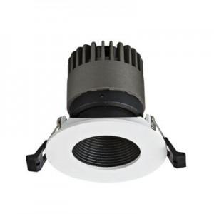Spot Light DL9010 R12