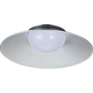 Pendant Light F80106-W