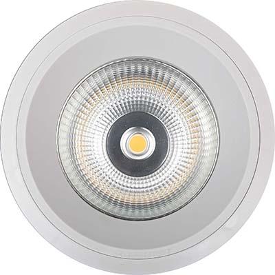 OEM/ODM Factory Led Retrofit Recessed Downlight - Aluminum Body Led Downlight 50w – Pro.Lighting