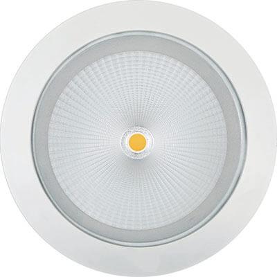 China Gold Supplier for 40w Led Track Light - Down Light 10029LED – Pro.Lighting
