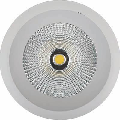 2017 China New Design Indoor Spotlight - Down Light DL6008N – Pro.Lighting