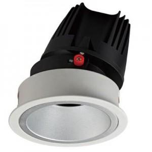 Down Light DL8006